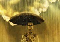 Acid rain photo